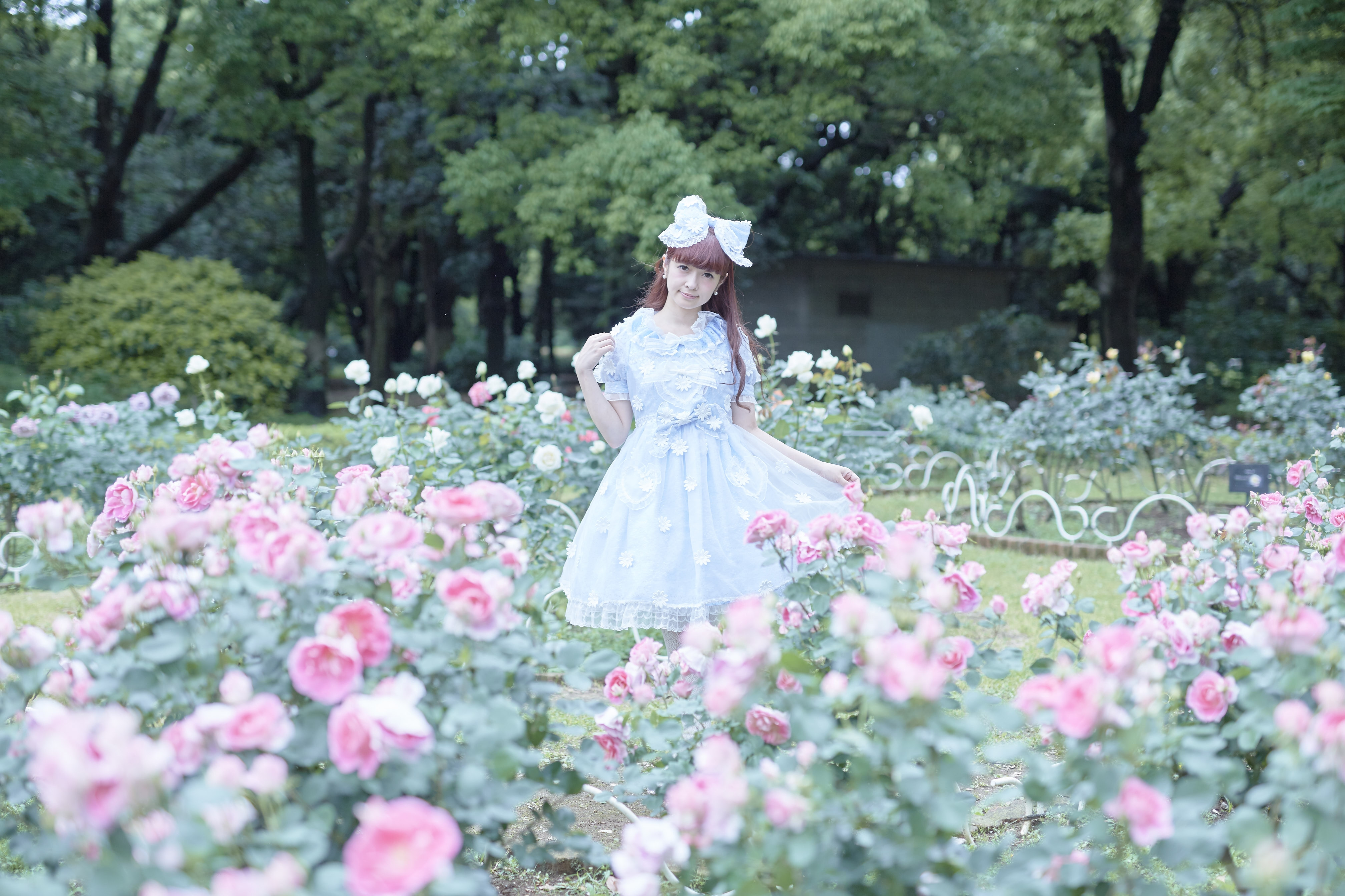 young lolitas  blogintriga From all the girls wearing Lolita fashion in each country, we select one  person like me to act as representative, who then leads their group in  their ...