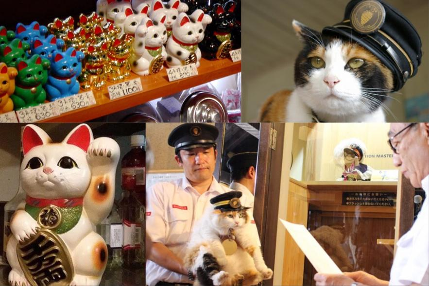 KAWAII JAPAN: ALL ABOUT CATS – PART ONE